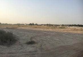 Foto de terreno habitacional en venta en s/n , miguel de la madrid hurtado, gómez palacio, durango, 7646680 No. 04