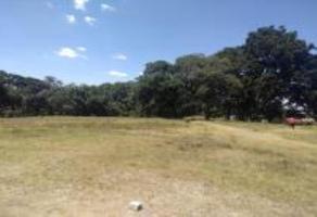 Foto de terreno habitacional en venta en sn , miguel hidalgo 2a sección, tlalpan, df / cdmx, 18758526 No. 01