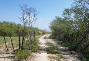 Foto de terreno comercial en venta en s/n , montemorelos centro, montemorelos, nuevo león, 9971085 No. 01