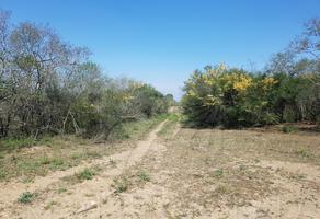 Foto de terreno comercial en venta en s/n , montemorelos centro, montemorelos, nuevo león, 9976320 No. 01