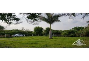 Foto de terreno habitacional en venta en s/n , morelos, cuautla, morelos, 0 No. 01