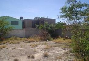 Foto de terreno habitacional en renta en s/n , nuevo san isidro, torreón, coahuila de zaragoza, 6123170 No. 01