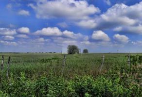Foto de terreno comercial en venta en s/n numero 1 , el fraile, montemorelos, nuevo león, 16691984 No. 01