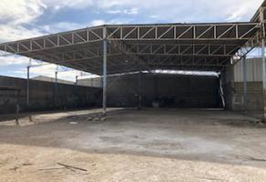 Foto de nave industrial en renta en s/n , oriente, torreón, coahuila de zaragoza, 11665665 No. 01