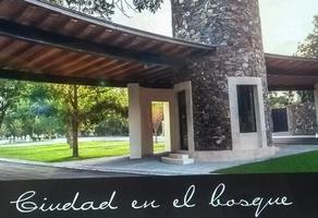 Foto de terreno habitacional en venta en s/n , peña alta, ramos arizpe, coahuila de zaragoza, 15746676 No. 05