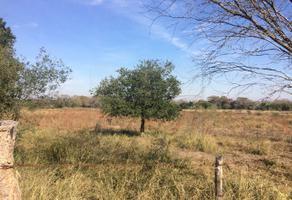 Foto de terreno comercial en venta en s/n , pesquería, pesquería, nuevo león, 9964639 No. 01