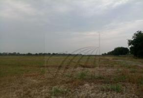 Foto de terreno comercial en venta en s/n , pesquería, pesquería, nuevo león, 9990211 No. 01