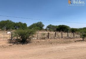 Foto de terreno comercial en venta en sn , pilar de zaragoza, durango, durango, 0 No. 01
