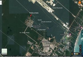 Foto de terreno comercial en venta en s/n , playa del carmen, solidaridad, quintana roo, 12186537 No. 01
