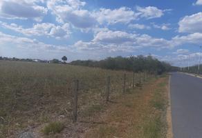 Foto de terreno habitacional en venta en sn , praderas de cadereyta, cadereyta jiménez, nuevo león, 16866158 No. 01