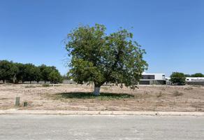 Foto de terreno habitacional en venta en s/n , real del nogalar, torreón, coahuila de zaragoza, 14963431 No. 01