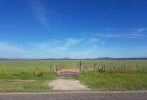 Foto de terreno habitacional en venta en s/n , rinconada badiola, durango, durango, 15123277 No. 01