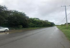 Foto de terreno habitacional en venta en s/n , rio verde km. 3, linares, nuevo león, 19439814 No. 01
