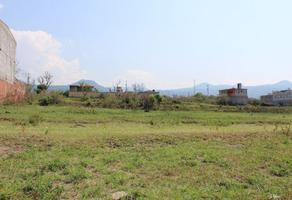 Foto de terreno habitacional en venta en sn s, los cerritos, atlatlahucan, morelos, 0 No. 01