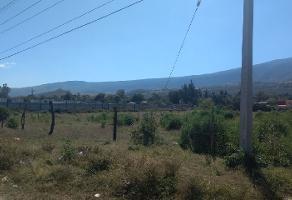Foto de terreno comercial en venta en s/n , san miguel cuyutlan, tlajomulco de zúñiga, jalisco, 5864145 No. 01