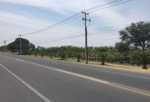 Foto de terreno comercial en venta en s/n , san sebastián el grande, tlajomulco de zúñiga, jalisco, 6361594 No. 01