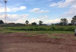 Foto de terreno comercial en venta en s/n , san sebastián el grande, tlajomulco de zúñiga, jalisco, 6361794 No. 01