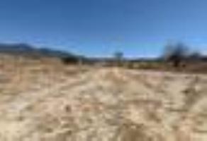 Foto de terreno habitacional en venta en sn , san sebastián etla, san pablo etla, oaxaca, 0 No. 01
