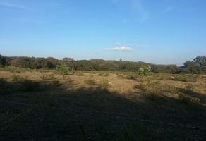 Foto de terreno comercial en venta en s/n , santa ana tepetitlán, zapopan, jalisco, 5864620 No. 02