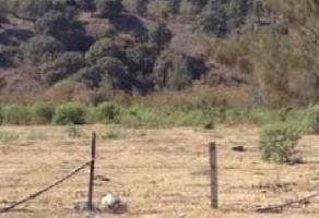 Foto de terreno comercial en venta en s/n , santa ana tepetitlán, zapopan, jalisco, 5867321 No. 01
