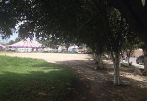 Foto de terreno comercial en venta en s/n , santa ana tepetitlán, zapopan, jalisco, 5867515 No. 01