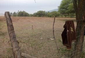Foto de terreno comercial en venta en s/n , santa cruz de las flores, tlajomulco de zúñiga, jalisco, 5865308 No. 01