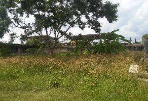 Foto de terreno comercial en venta en s/n , santa cruz del valle, tlajomulco de zúñiga, jalisco, 6361624 No. 02