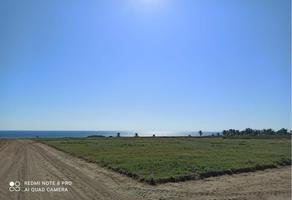 Foto de terreno habitacional en venta en sn , santa elena el tule, santa maría tonameca, oaxaca, 17688932 No. 01