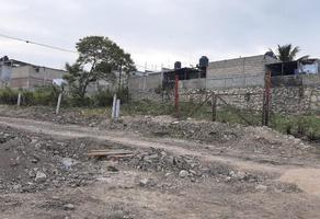 Foto de terreno habitacional en venta en sn , santa elena, tuxtla gutiérrez, chiapas, 21247428 No. 01