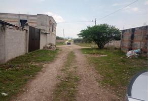 Foto de terreno habitacional en venta en sn , santa fe, tequisquiapan, querétaro, 0 No. 01