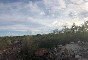 Foto de terreno habitacional en venta en s/n , santa gertrudis copo, mérida, yucatán, 0 No. 01