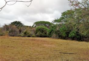Foto de terreno habitacional en venta en sn , santa rosa, puerto vallarta, jalisco, 8559813 No. 01