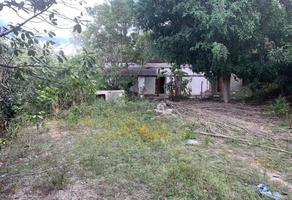 Foto de terreno habitacional en venta en sn , santo domingo barrio alto, villa de etla, oaxaca, 0 No. 01
