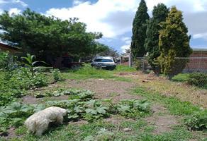 Foto de terreno habitacional en venta en s/n s/n , almoloya de juárez centro, almoloya de juárez, méxico, 0 No. 01