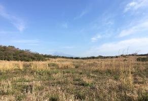 Foto de terreno habitacional en venta en s/n s/n , ignacio allende, colima, colima, 12823781 No. 01