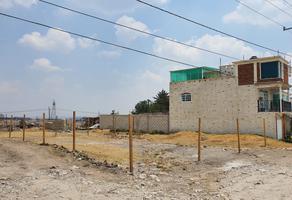 Foto de terreno habitacional en venta en s/n s/n , san francisco tlalcilalcalpan, almoloya de juárez, méxico, 0 No. 01