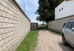 Foto de terreno habitacional en venta en s/n s/n , san miguel zinacantepec, zinacantepec, méxico, 0 No. 01