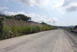 Foto de terreno habitacional en venta en s/n s/n , tapeixtles, manzanillo, colima, 0 No. 01