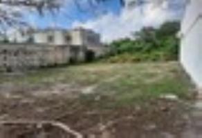 Foto de terreno habitacional en venta en sn , supermanzana 319, benito juárez, quintana roo, 0 No. 01