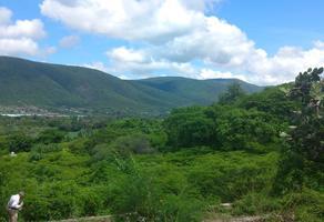 Foto de terreno habitacional en venta en s/n , temilpa nuevo, tlaltizapán de zapata, morelos, 12843997 No. 01