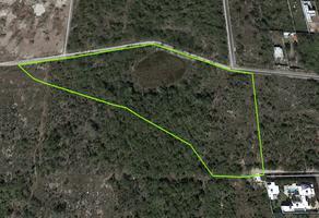 Foto de terreno comercial en venta en sn , temozon norte, mérida, yucatán, 0 No. 01