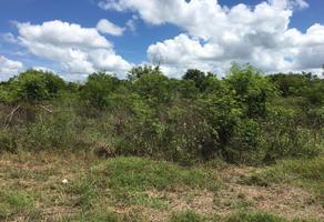 Foto de terreno habitacional en renta en s/n , temozon norte, mérida, yucatán, 0 No. 01