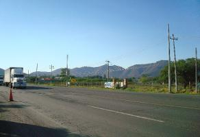 Foto de terreno comercial en venta en s/n , tlajomulco centro, tlajomulco de zúñiga, jalisco, 5865405 No. 02