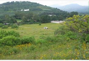 Foto de terreno habitacional en venta en sn , totolapan, totolapan, morelos, 0 No. 01