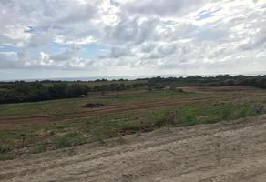 Foto de terreno habitacional en venta en sn , zicatela, santa maría colotepec, oaxaca, 18716063 No. 01