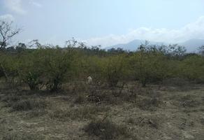 Foto de terreno habitacional en venta en s/nombre um, san agustin etla, san agustín etla, oaxaca, 16953300 No. 01