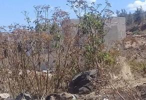 Foto de terreno habitacional en venta en sociedad s/ n, buenos aires, san pedro tlaquepaque, jalisco, 0 No. 01