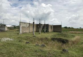 Foto de terreno habitacional en venta en soledad morelos 20, san lorenzo los jagüeyes, atlixco, puebla, 0 No. 01