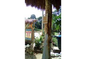 Foto de casa en venta en  , solferino, lázaro cárdenas, quintana roo, 12326422 No. 01