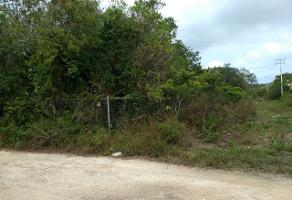 Foto de terreno industrial en venta en solidaridad 51, alfredo v bonfil, benito juárez, quintana roo, 6884728 No. 01